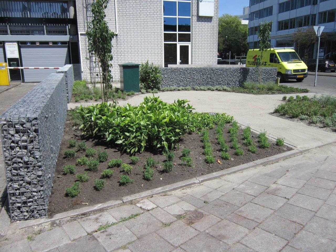 Renovatie bedrijfstuin Rijswijk<br>Juni 2016